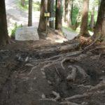 Steiles Stück am Downhill Brandnertal