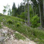 Ausfahrt oberer Streckenabschnitt