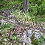 steile Passage mit Wurzeln und Steinen