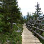 Trail entlang des Lawinenverbaus