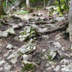 Steiler und verblockter Streckenabschnitt Feuerkogel Downhill