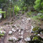Trailabschnitt mit steinigem Untergrund