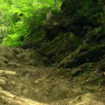 Hopfgarten WoodworX Downhill steinige Passage