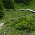 lang gezogene Holzbrücke