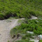 Steilste Stelle des Trails