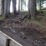 Downhill Bikepark Serfaus Fiss Ladis