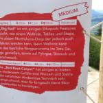 Beschreibung der Trails Big Red und Red Root-Carpet Bikepark Wurbauerkogel