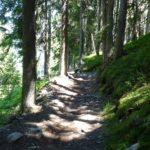 flacher und verblockter Streckenabschnitt