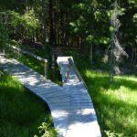 Holzbrücke mit gesperrtem Drop