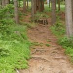 Downhill Steinach Silbersattel
