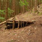 Drop auf der Freeride im Bikepark Steinach Silbersattel