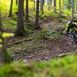 naturbelassener Trail
