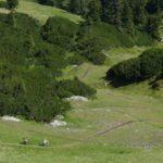 Erste Kurven Grubigalm Trail