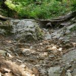 Steinreicher Boden in Todtnau ;)