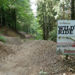 Freeride Wildride im Bikepark Todtnau