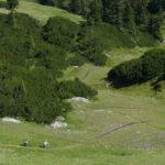 Erster Teil des Grubigalm Trails