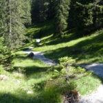 Trail über losen Schotter auf verfestigtem Untergrund