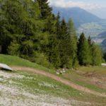 Start des EinsEinser Trails an der Bergstation Elfer Bahnen