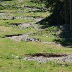 Oberer Abschnitt des Auerhahn Trails