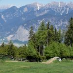 Auerhahn Trail Jumpline Bikepark Innsbruck