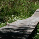 Holzbrücke am Bulgarian Way Götzens