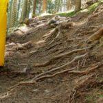 Natürlicher Waldboden für mehr Spaß bei Nässe