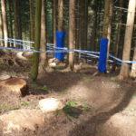Downhillstrecke mit Baumstümpfen