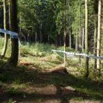 Streckenabschnitt mit Steilstück kurz vor der Forststraße