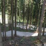 Step-Ups, Sprünge und Anlieger im Wald
