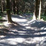 Flowtrail Bikepark Hahnenklee