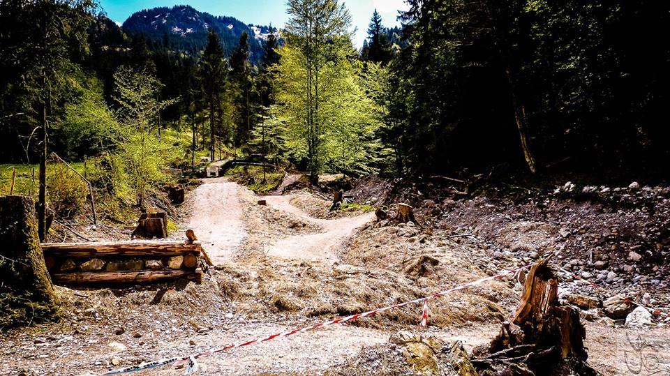 Trail im Bikepark Hindelang