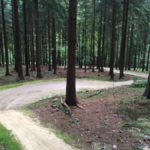 Flow im Bikepark Elstra, (c) Robin Klinkert