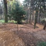 Jumpline Black Mountain Bikepark Elstra, (c) Robin Klinkert