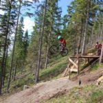 Biker springt Drop im Bikepark Mariazeller Bürgeralpe