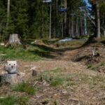 Exit-Trail Bikepark Lipno