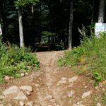Einfahrt Downhill