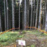 Start der dritten Sektion des AB Trails