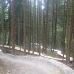 Trail Holzwurm im Bikepark Oberammergau