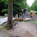 Gap am Wildcat Trail im Bikepark Erbeskopf