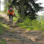 Wurzel Flow am Hardrock Trail