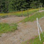 die ersten Kurven des Trails