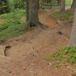 Trail im Bikepark Wagrain